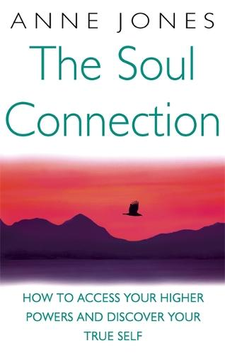 The Soul Connection: How to access your higher powers and discover your true self (Paperback)