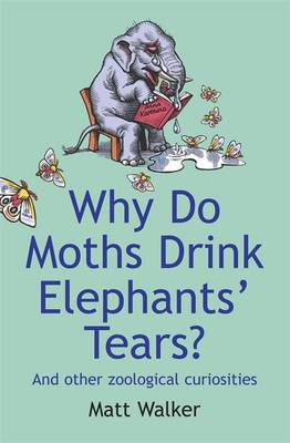 Why Do Moths Drink Elephants' Tears?: and Other Zoological Curiosities (Paperback)