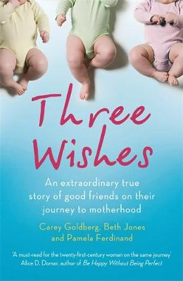 Three Wishes: An extraordinary true story of good friends on their journey to motherhood (Paperback)