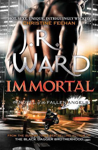 Immortal: Number 6 in series - Fallen Angels (Paperback)