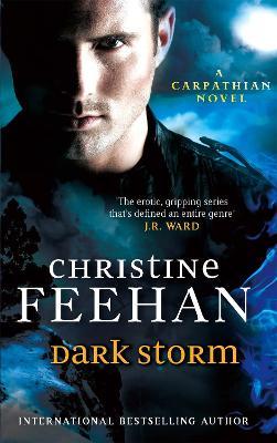 Dark Storm: Number 23 in series - Dark Carpathian (Paperback)