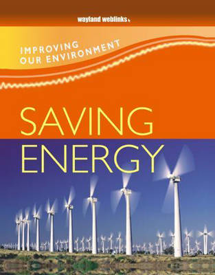 Saving Energy - Improving Our Environment 8 (Paperback)