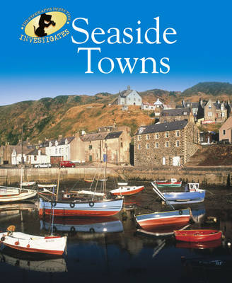 Seaside Towns - The Geography Detective Investigates 10 (Paperback)