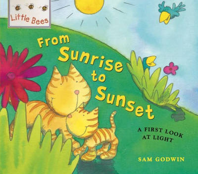 From Sunrise to Sunset: A First Look at Light - Little Bees 3 (Paperback)