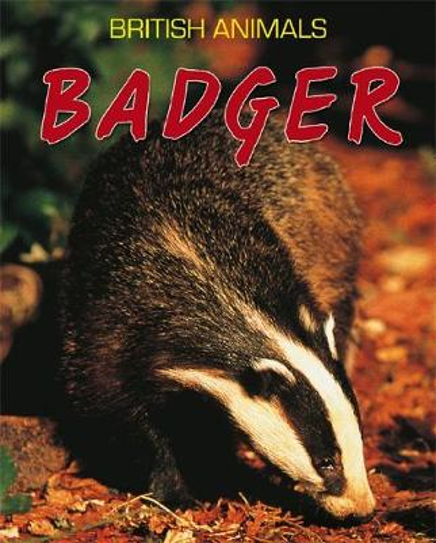 British Animals: Badger - British Animals (Paperback)