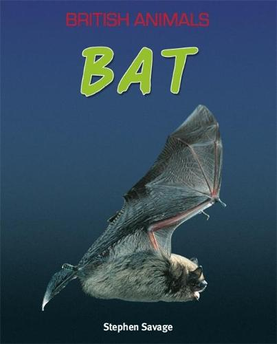 British Animals: Bat - British Animals (Paperback)