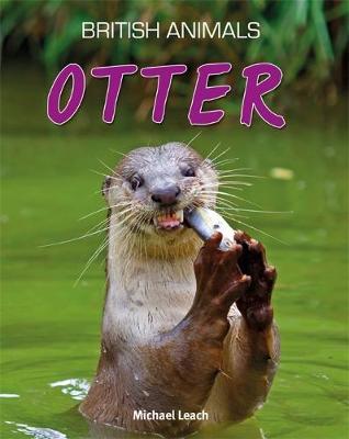 Otter - Animal Neighbours (Paperback)
