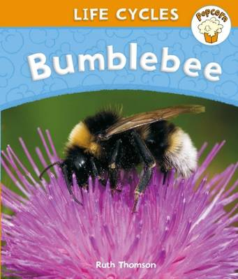 Bumblebee - Popcorn: Life Cycles (Paperback)