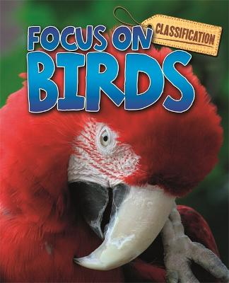 Classification: Focus on: Birds - Classification: Focus on (Paperback)