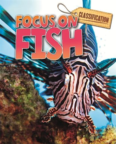 Classification: Focus on: Fish - Classification: Focus on (Paperback)