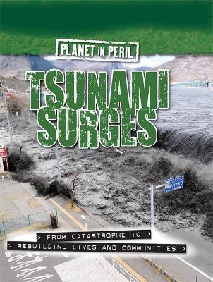 Planet in Peril: Tsunami Surges - Planet in Peril (Hardback)