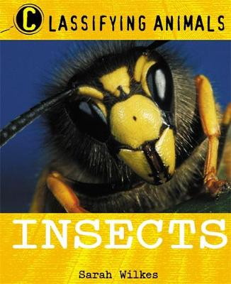 Classifying Animals: Insects - Classifying Animals (Paperback)