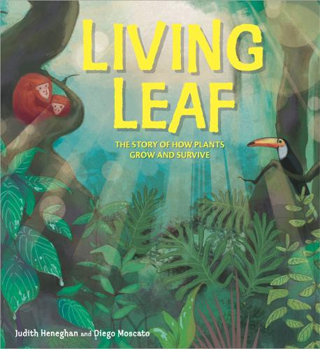 Plant Life: Living Leaf: The Story of How Plants Grow and Survive - Plant Life (Hardback)