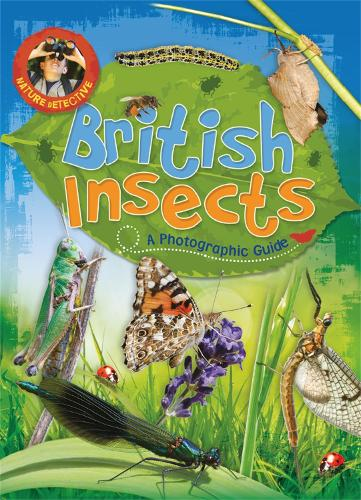 Nature Detective: British Insects - Nature Detective (Paperback)