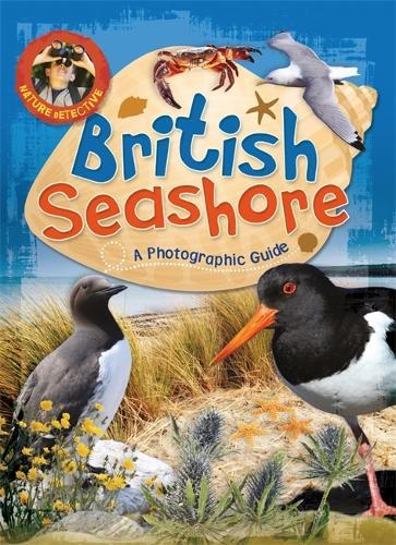 Nature Detective: British Seashore - Nature Detective (Paperback)