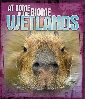 At Home in the Biome: Wetlands - At Home in the Biome (Paperback)
