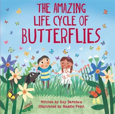 Look and Wonder: The Amazing Life Cycle of Butterflies - Look and Wonder (Hardback)