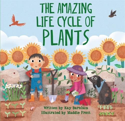Look and Wonder: The Amazing Plant Life Cycle Story - Look and Wonder (Hardback)