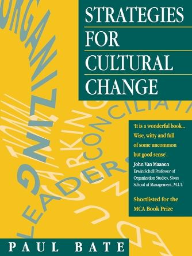 Strategies for Cultural Change (Paperback)