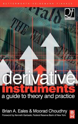 Derivative Instruments: A Guide to Theory and Practice - Quantitative Finance (Hardback)