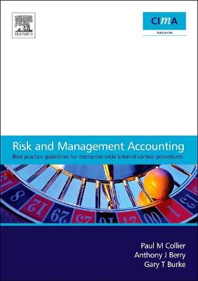 Risk and Management Accounting: Best Practice Guidelines for Enterprise-Wide Internal Control Procedures (Paperback)