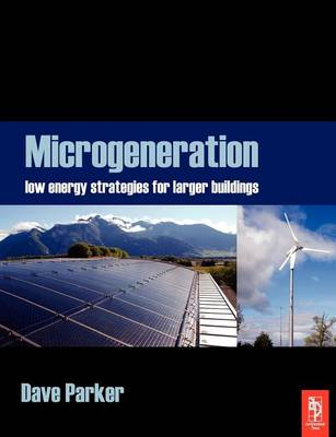 Microgeneration: Low energy strategies for larger buildings (Paperback)