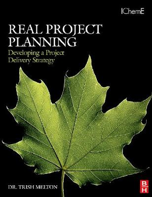 Real Project Planning: Developing a Project Delivery Strategy (Paperback)