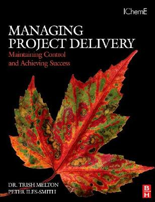 Managing Project Delivery: Maintaining Control and Achieving Success (Paperback)