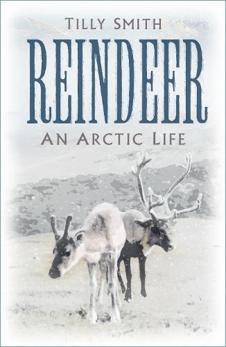 Reindeer: An Arctic Life (Hardback)