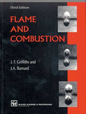 Flame and Combustion 1995 (Paperback)