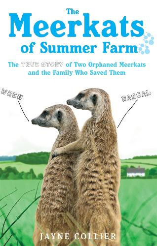 The Meerkats Of Summer Farm: The True Story of Two Orphaned Meerkats and the Family Who Saved Them (Paperback)