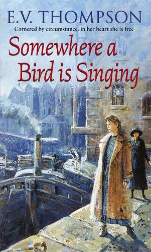 Somewhere A Bird Is Singing (Paperback)