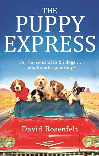 The Puppy Express: On the road with 25 rescue dogs . . . what could go wrong? (Paperback)