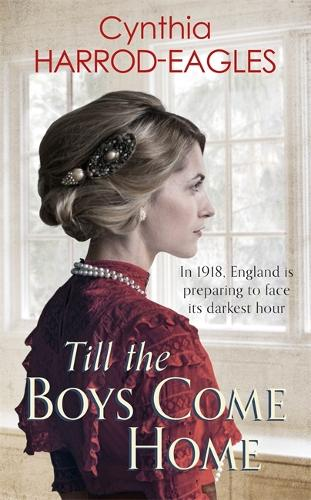 Till the Boys Come Home: War at Home, 1918 - War at Home (Paperback)