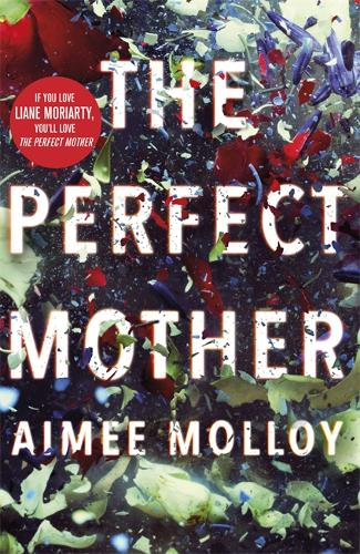The Perfect Mother (Paperback)