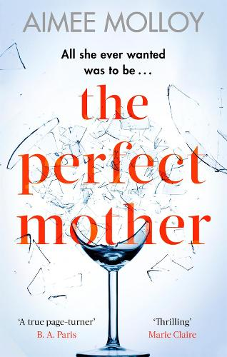The Perfect Mother: A gripping thriller with a nail-biting twist (Paperback)