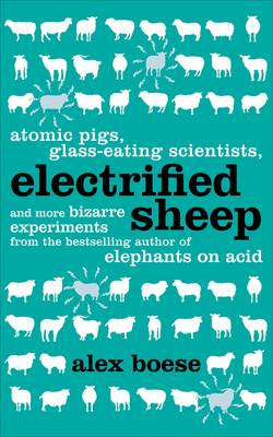 Electrified Sheep (Paperback)