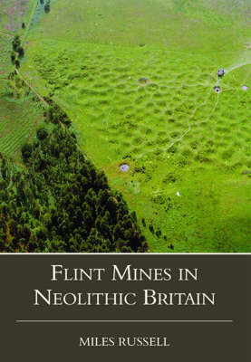 Neolithic Flint Mines in Britain (Hardback)