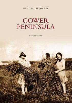 Gower Peninsula: Images of Wales (Paperback)