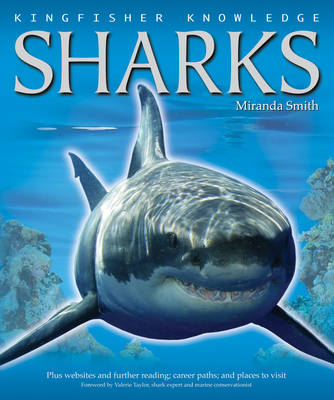 Kingfisher Knowledge Sharks (Paperback)