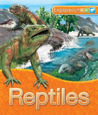Explorers: Reptiles (Hardback)