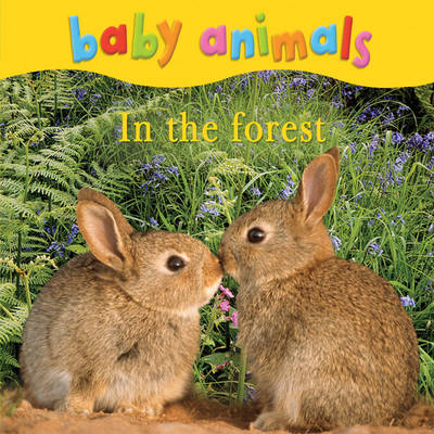 Baby Animals: In the Forest (Board book)