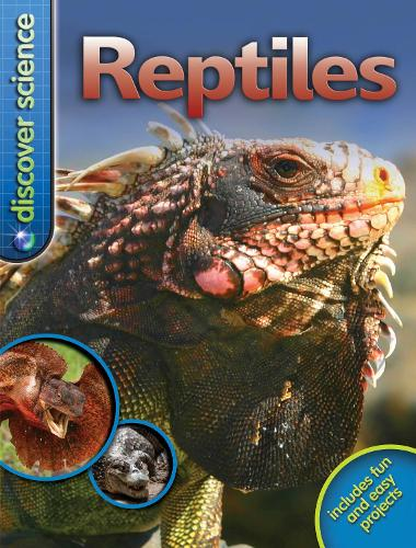 Discover Science: Reptiles - Discover Science (Paperback)