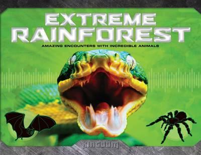 Kingdom: Extreme Rainforest (Hardback)