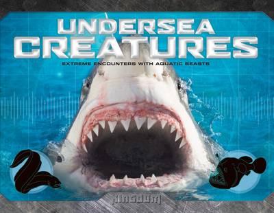 Kingdom: Undersea Creatures (Hardback)