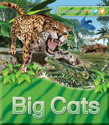 Explorers: Big Cats - Explorers (Hardback)
