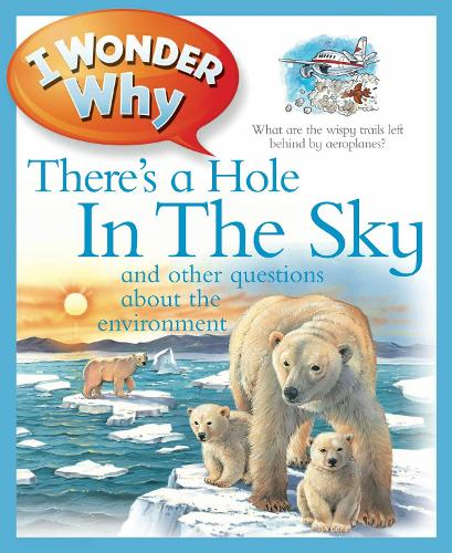 I Wonder Why There's a Hole in the Sky - I Wonder Why (Paperback)