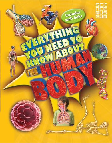 Everything You Need To Know About The Human Body - Everything You Need to Know (Paperback)