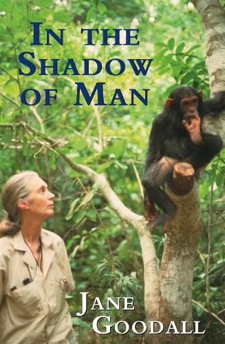 In the Shadow of Man (Paperback)