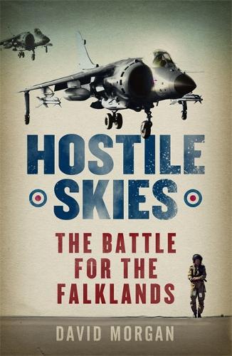 Hostile Skies (Paperback)